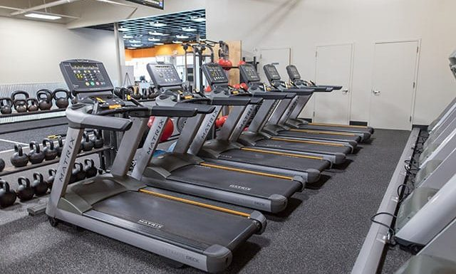 row of cardio equipment in best gym