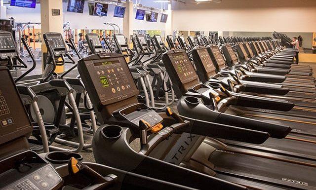 row of treadmills at modern gym