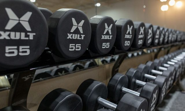 free weights lined up on rack