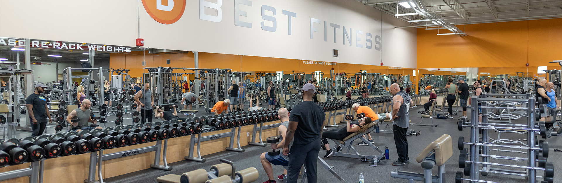 rows of free weights